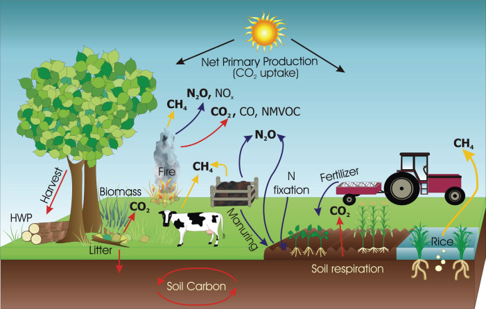 farm_emissions_sources.png